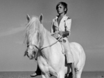 白い馬.jpg